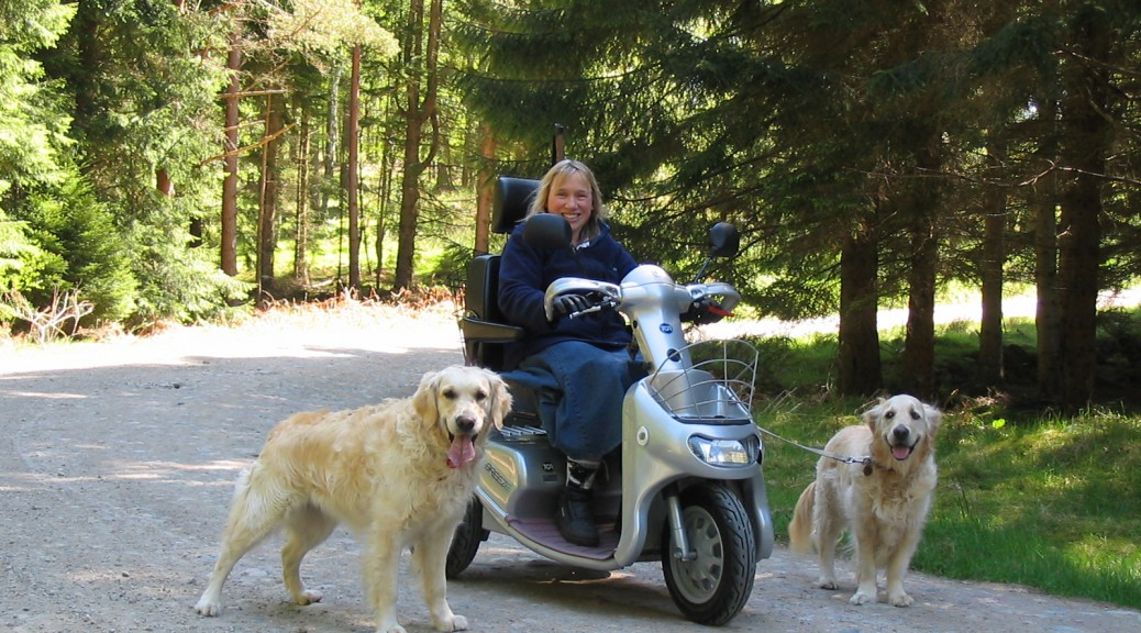 Very happy lady on large three wheeled TGA Breeze scooter which she bought from All Terrain Mobility . In the Scottish highlands with with two golden retriever dogs. Having mobility scooter / powerchair insurance means you can relax when out and about on your mobility scooter as you are covered!